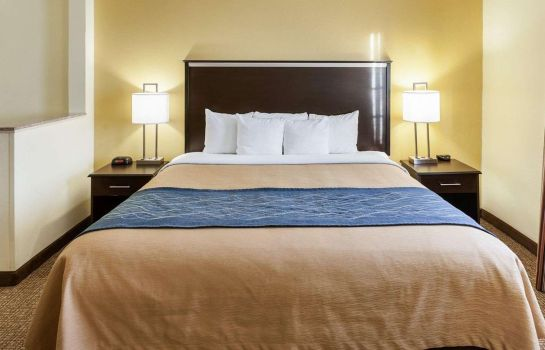 Tweepersoonskamer (comfort) Comfort Inn & Suites Texas Hill Country