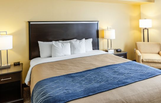 Zimmer Comfort Inn & Suites Texas Hill Country