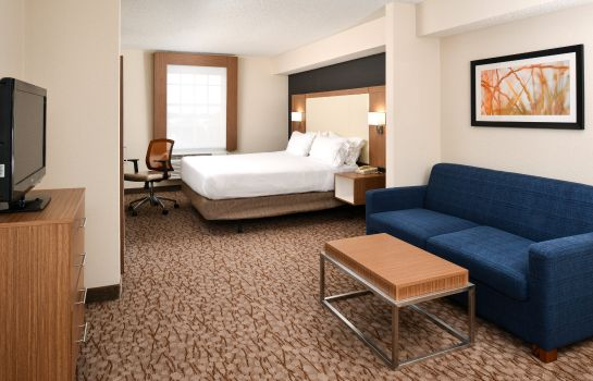 Suite Holiday Inn Express & Suites NAPLES NORTH - BONITA SPRINGS