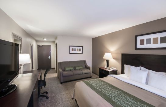 Suite Comfort Inn Near Plano Medical Center