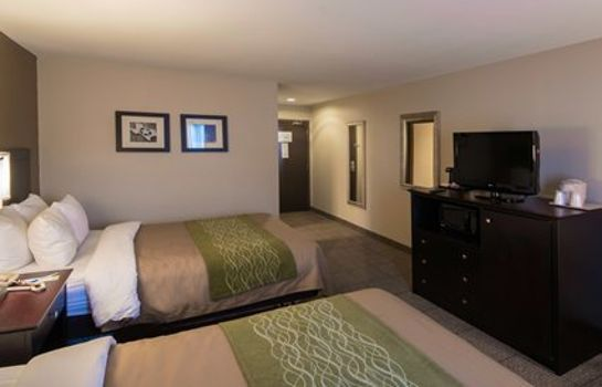 Zimmer Comfort Inn Near Plano Medical Center