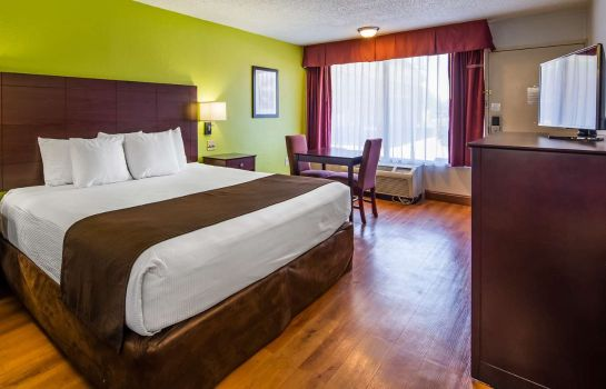 Zimmer BEST WESTERN GREENVILLE