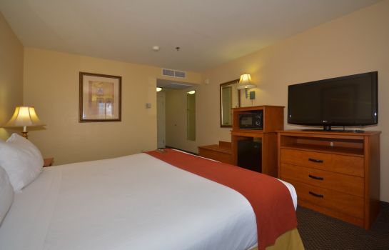 Room Holiday Inn Express LAS VEGAS-NELLIS