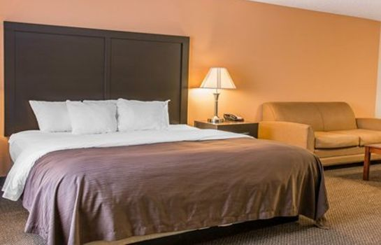 Suite Quality Inn & Suites Niles