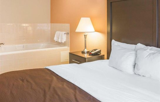 Suite Quality Inn and Suites Niles