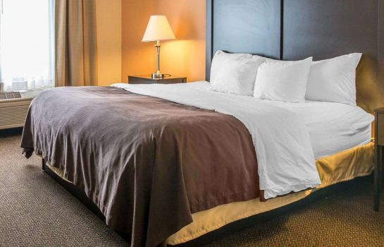 Chambre Quality Inn & Suites Niles