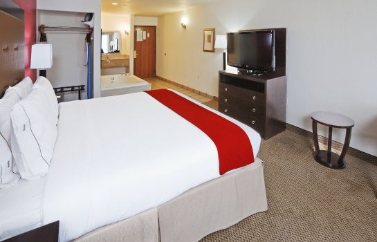Suite Holiday Inn Express & Suites OKLAHOMA CITY-PENN SQUARE