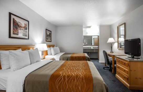 Zimmer Comfort Inn & Suites Sequoia Kings Canyon