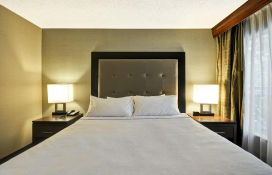 Suite Homewood Suites by Hilton Atlanta-Galleria-Cumberland