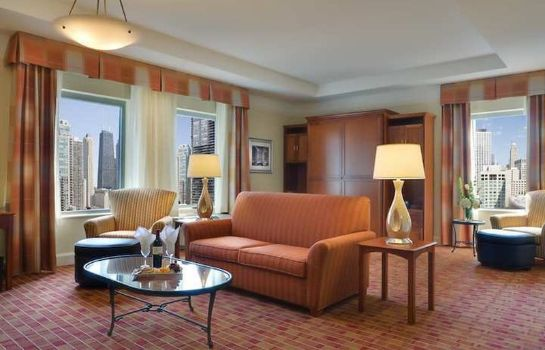 Suite Hilton Garden Inn Chicago Downtown/Magnificent Mile