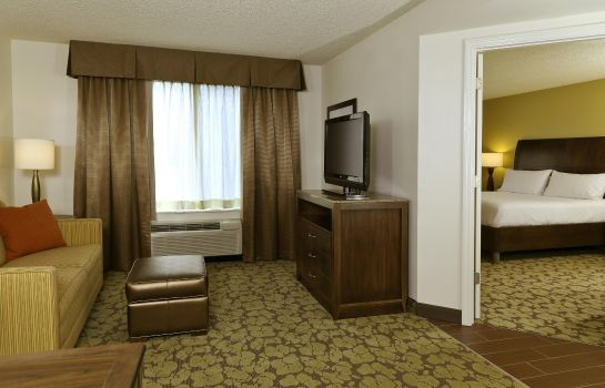 Suite Hilton Garden Inn Tampa East-Brandon