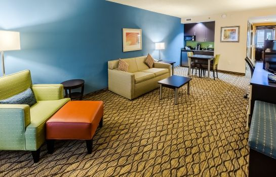 Room Holiday Inn & Suites ATLANTA AIRPORT-NORTH