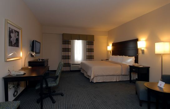 Zimmer Holiday Inn ATLANTA/ROSWELL