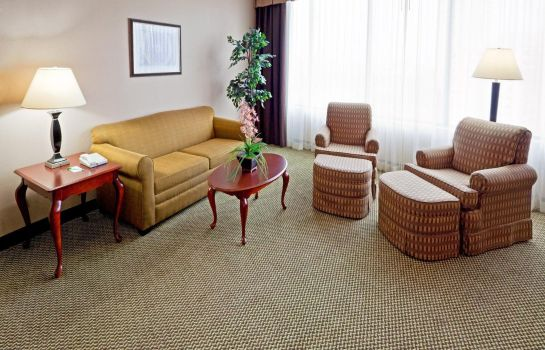 Suite Holiday Inn AUSTIN-TOWN LAKE