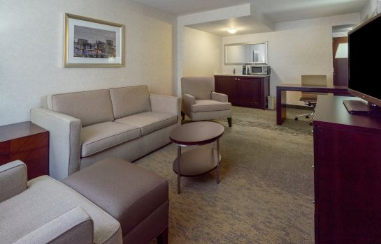 Suite Holiday Inn BALTIMORE-INNER HARBOR (DWTN)