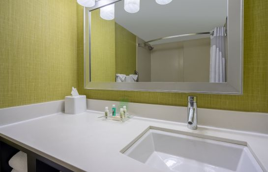 Info Holiday Inn BALTIMORE-INNER HARBOR (DWTN)
