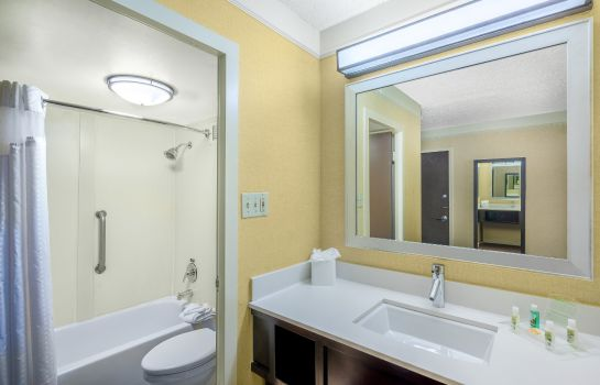 Chambre Holiday Inn BALTIMORE-INNER HARBOR (DWTN)