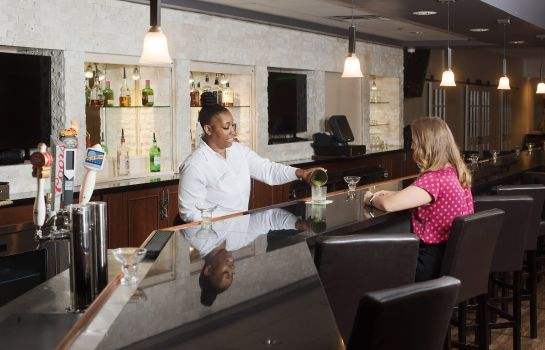 Hotel-Bar Holiday Inn BIRMINGHAM-AIRPORT