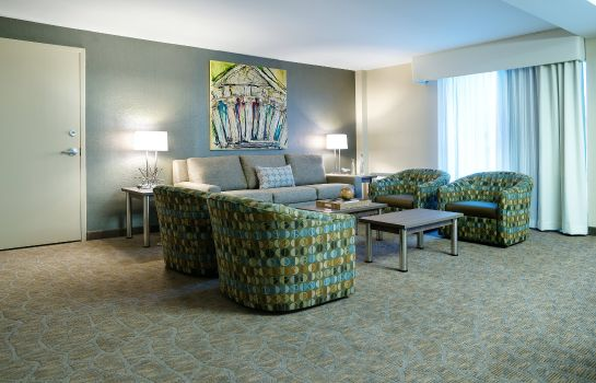 Suite Holiday Inn NASHVILLE-VANDERBILT (DWTN)