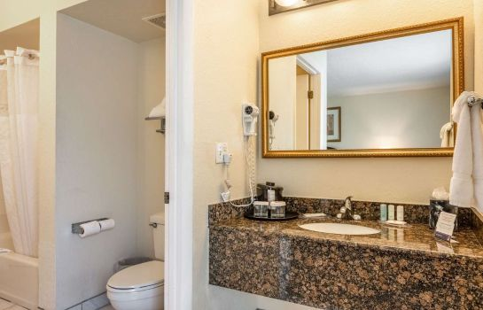 Suite Clarion Inn and Suites Clearwater Centra