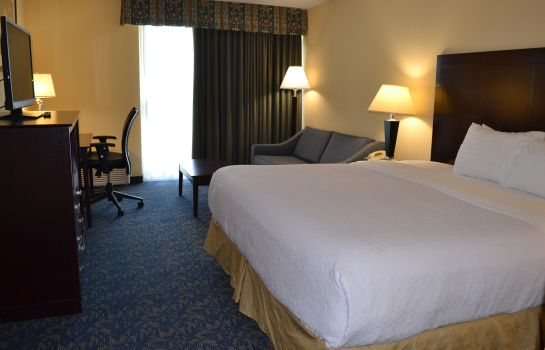 Camera Radisson Hotel Niagara Falls Grand Island