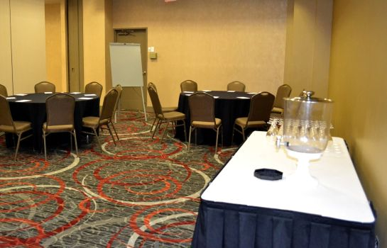 Conference room Holiday Inn HOUSTON S - NRG AREA - MED CTR