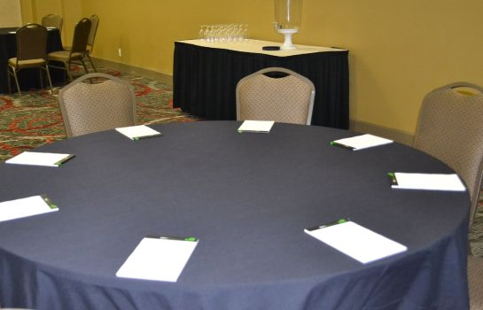 Sala de reuniones Holiday Inn HOUSTON S - NRG AREA - MED CTR