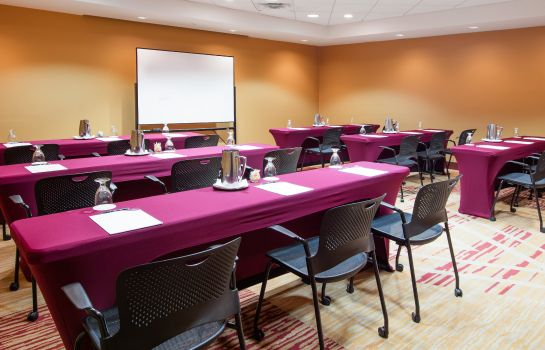 Conference room Crowne Plaza HOUSTON RIVER OAKS