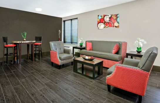 Suite Holiday Inn HOUSTON SW - SUGAR LAND AREA