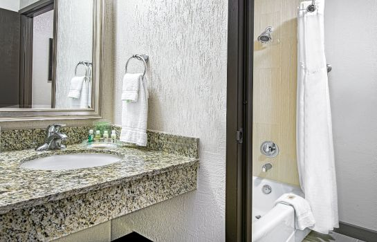 Info Holiday Inn HOUSTON SW - SUGAR LAND AREA
