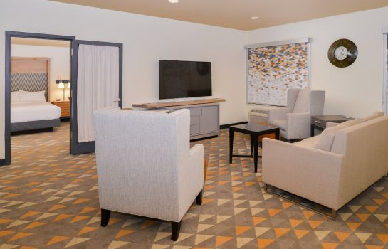 Suite Holiday Inn KANSAS CITY AIRPORT