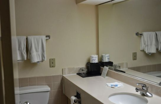 Bagno in camera Hotel Muscatine