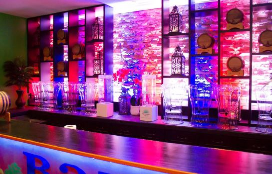 Hotel-Bar Holiday Inn & Suites PARSIPPANY