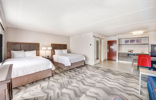 Suite Hampton Inn - Suites Atlanta-Galleria