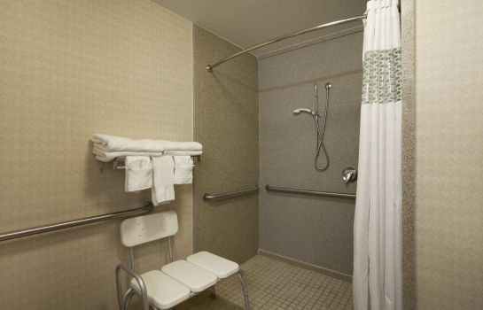 Zimmer Hampton Inn Orlando International Drive-Conv Ctr