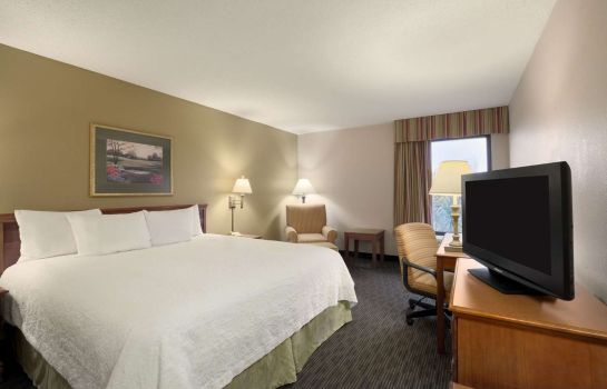 Habitación Hampton Inn Orlando International Drive-Conv Ctr