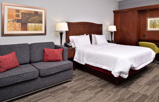 Chambre Hampton Inn Virginia Beach