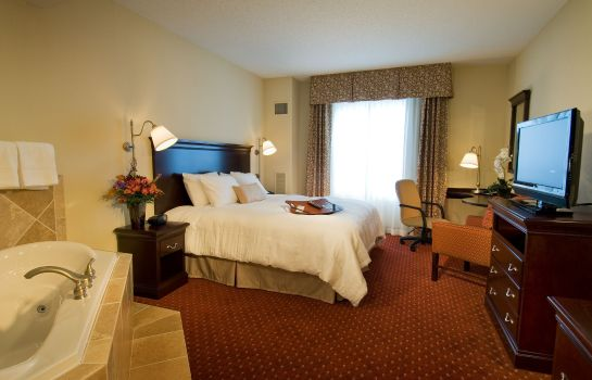 Zimmer Hampton Inn - Suites Washington-Dulles Intl Airport