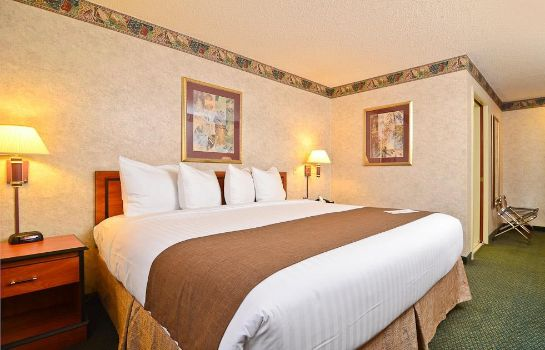 Zimmer BEST WESTERN EXECUTIVE INN