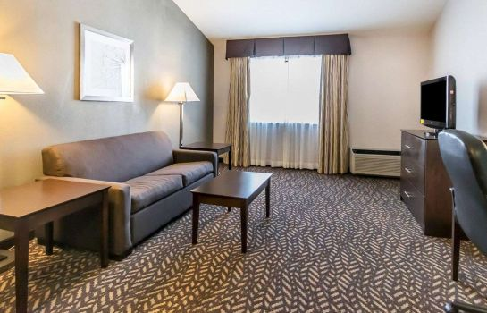 Suite Quality Inn & Suites University/Airport