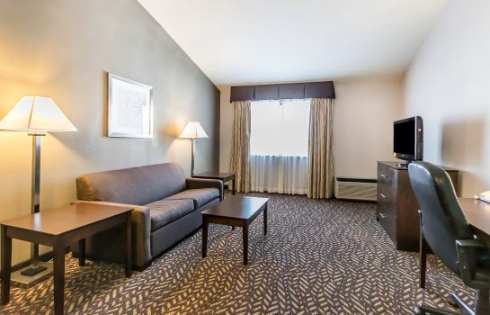 Zimmer Quality Inn & Suites University/Airport