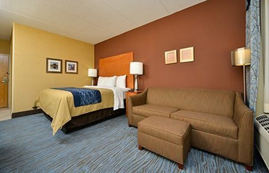 Suite Comfort Inn Plymouth