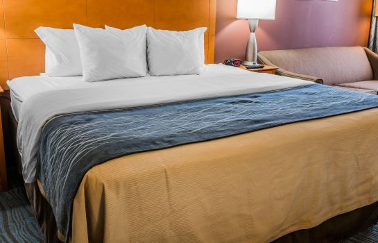 Camera Comfort Inn Plymouth - West Livonia