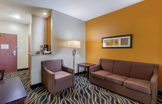 Suite Quality Suites Addison-Dallas