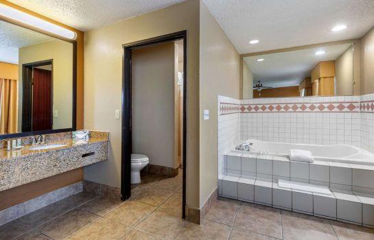 Room Quality Suites Addison-Dallas Quality Suites Addison-Dallas