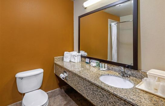 Zimmer Quality Suites Addison-Dallas