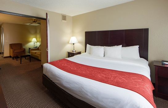 Room Quality Suites Addison