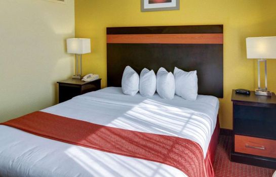 Suite Quality Suites Houston IAH Airport - Bel