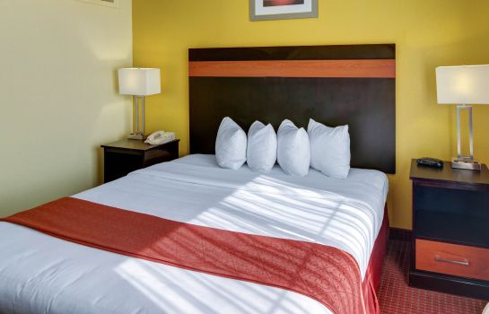 Zimmer Quality Suites Intercontinental Airport West