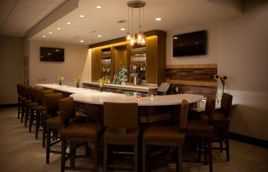 Bar del hotel Holiday Inn GREENVILLE